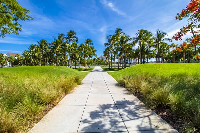 cesta v Miami